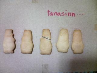 tanasinn ∵(・)∴∴.(・)∵∵